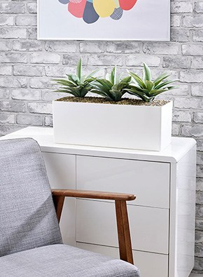 Agave Cabinet Trough
