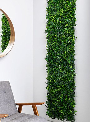 Mixed Ivy/Buxus UV Green Wall