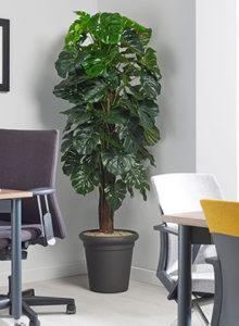 design planter cheeseonpole